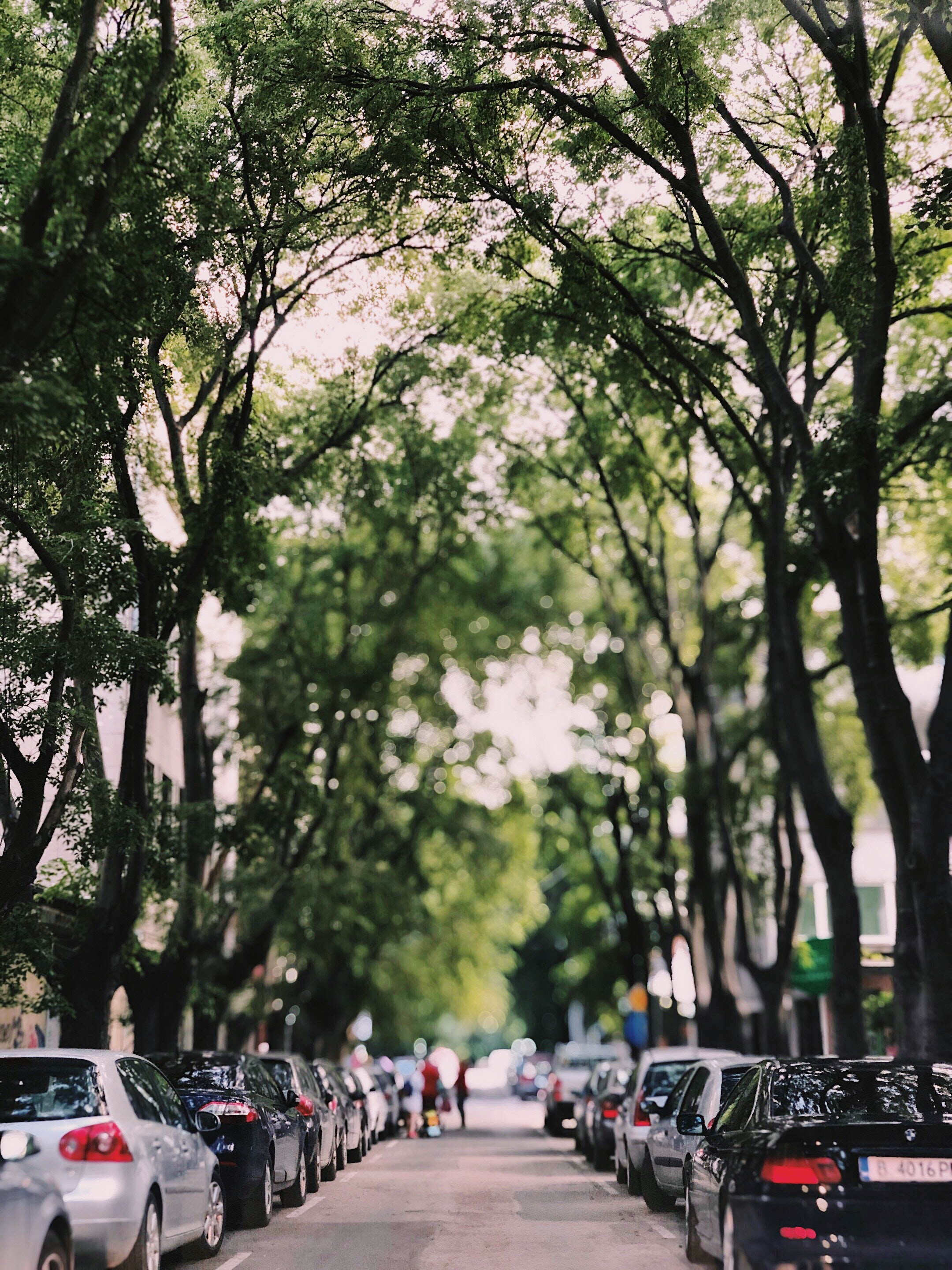 cars-parked-road-1222473 (1)
