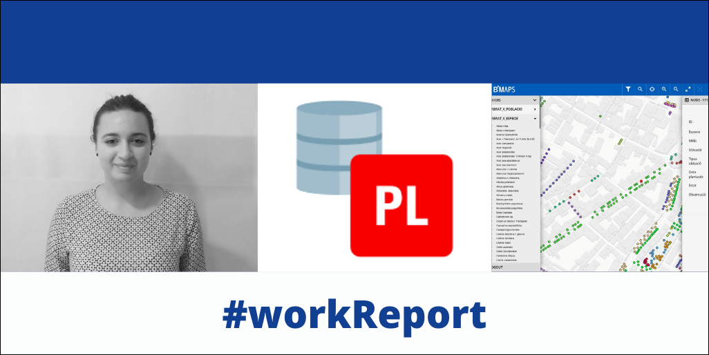 workreport_barbara